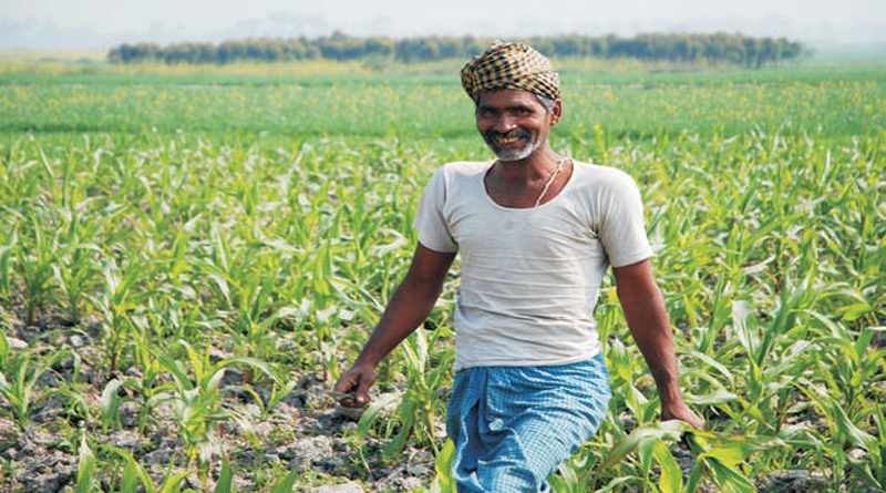 Doubling Farmer's Income Through Innovative Approaches